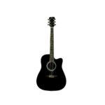 Acoustic Guitar QGA-21 Cut BK