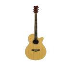 Acoustic Guitar QGA-40CE/NAT