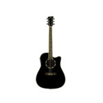 Acoustic Guitar pack QGA-51CE with/preamp