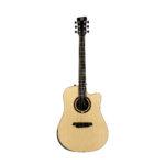 Acoustic Guitar QGA 100 CE w/preamp