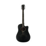 Acoustic Guitar QGA-101 BKCE w/preamp