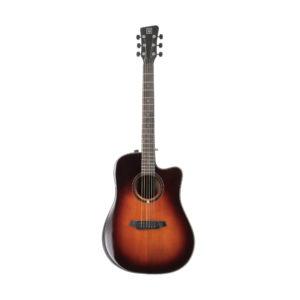 Acoustic Guitar QGA 100CE SB w/preamp