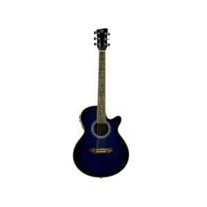 Acoustic Guitar QGA-41CE/BLUE