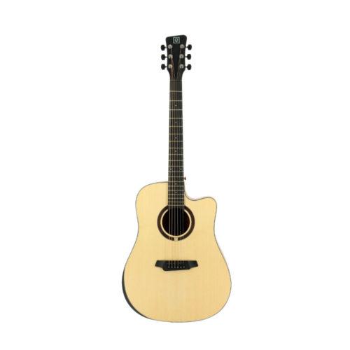 Acoustic Guitar QGA 100C