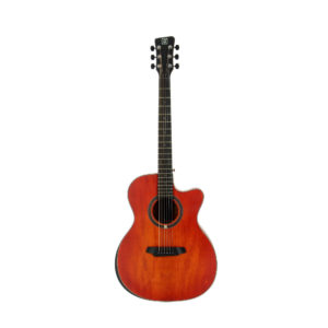 Acoustic Guitar QGA-102 RDC