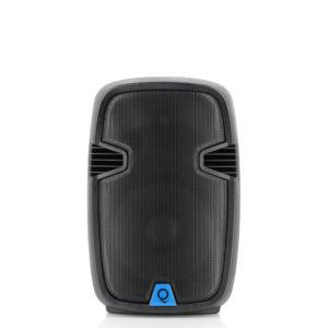 QLS-12 Speaker
